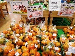 ●柿 渋柿.JPG